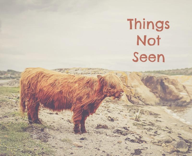 Things Not Seen